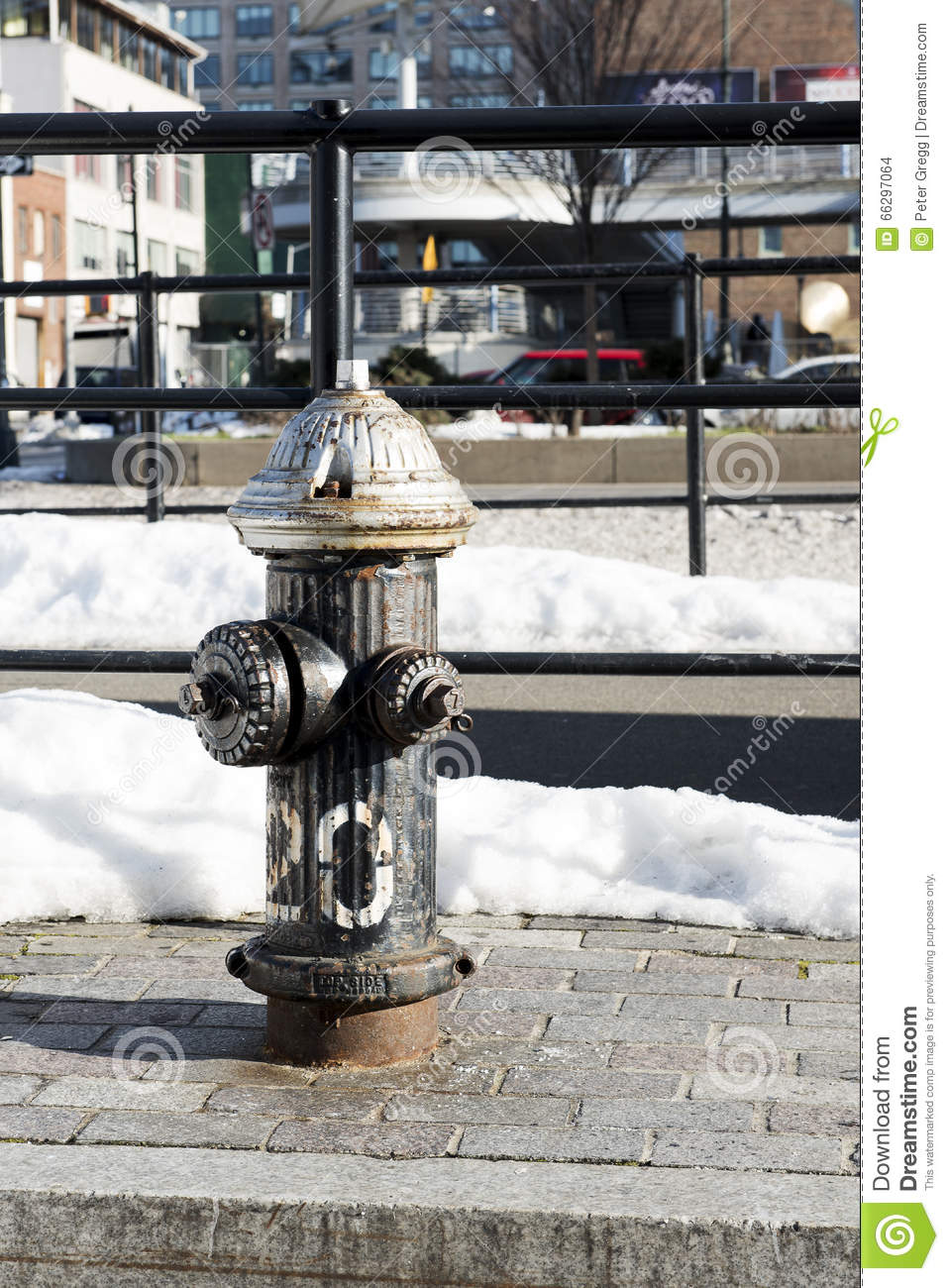 Black Fire hydrant (portrait)