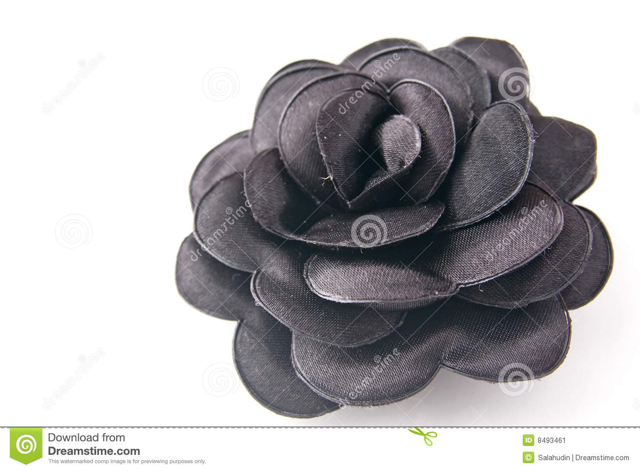 Black Flower Stock Image Image