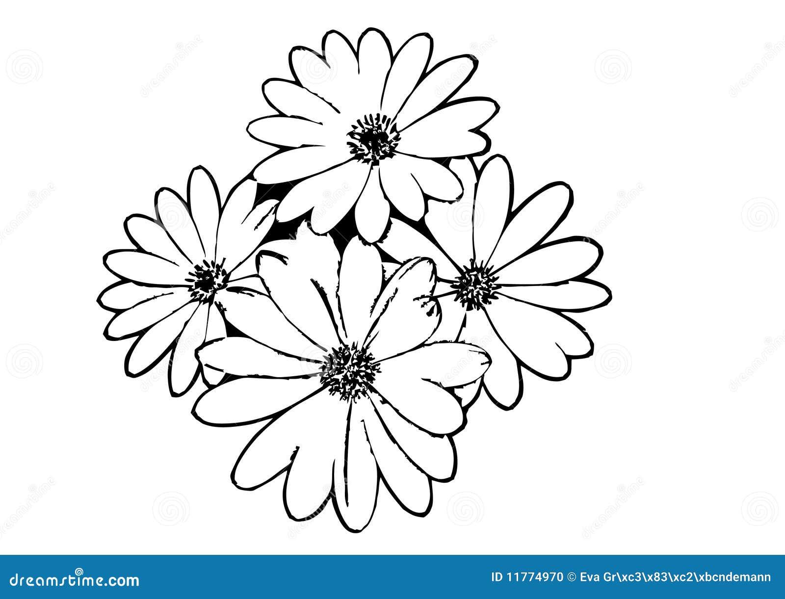 Black Flower Outline stock vector. Illustration of