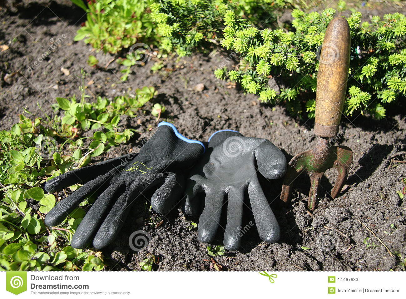 Black gardening gloves - Black Gardening Gloves Gardening Tools