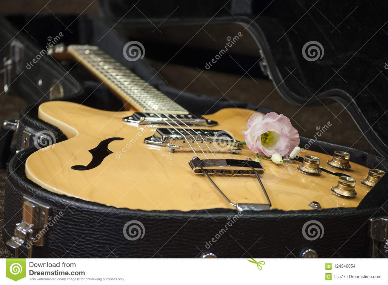 Black Guitar Case With Closeup Of Electric Guitar And Flower Stock