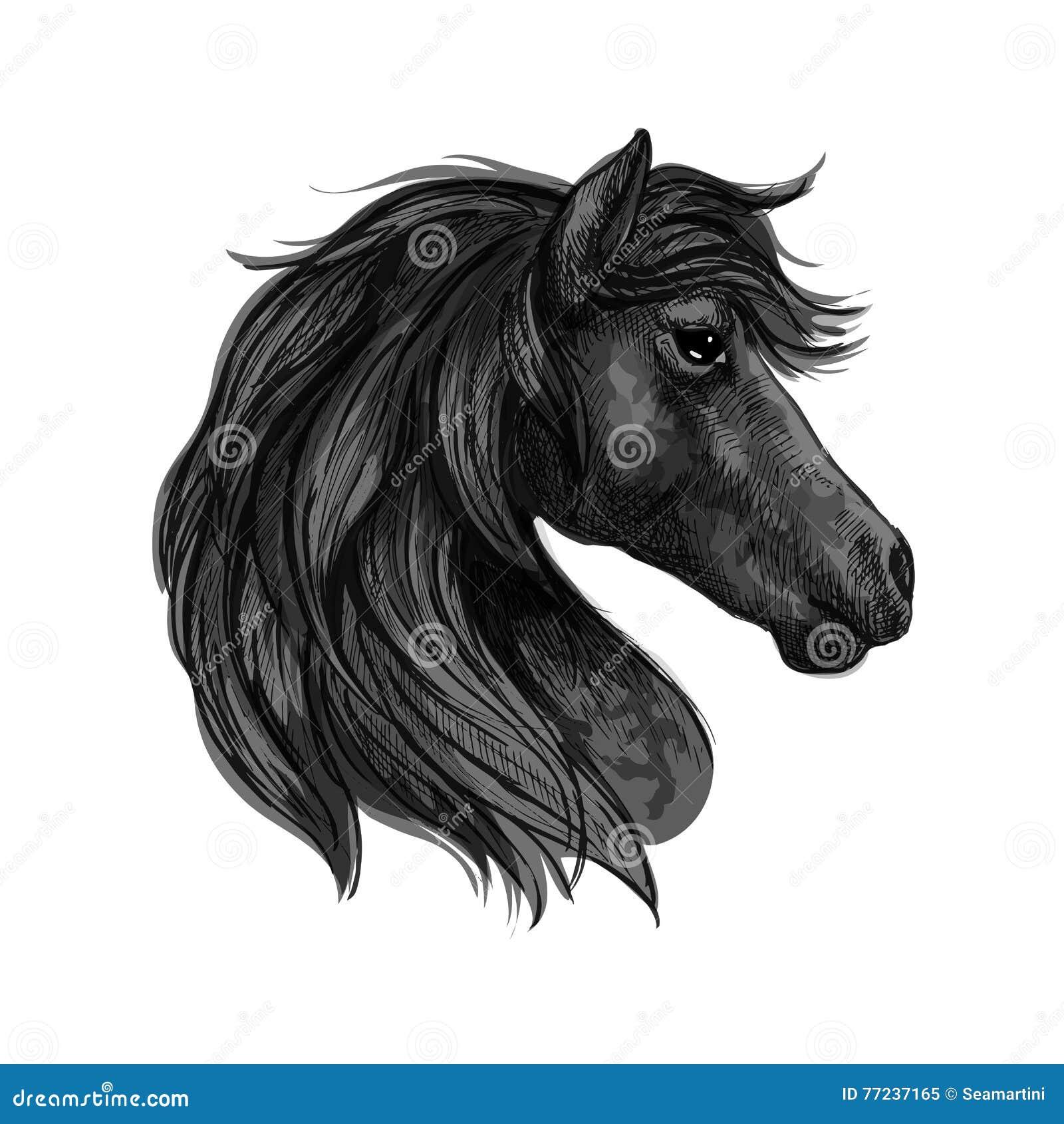 Black Horse Head Profile Portrait Stock Vector Illustration Of Horsy Animal 77237165
