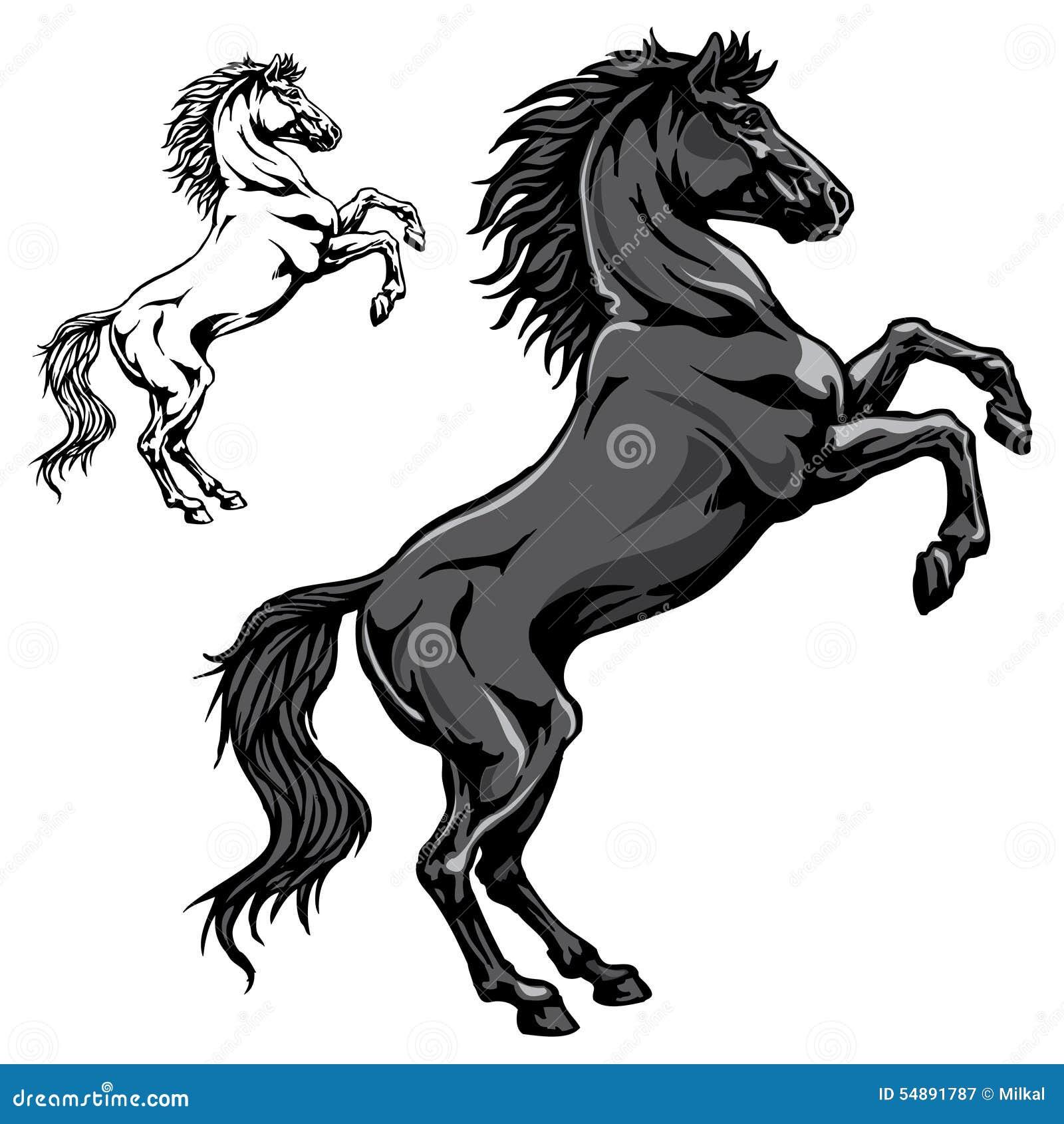 Black Horse Illustration 54891787 Megapixl