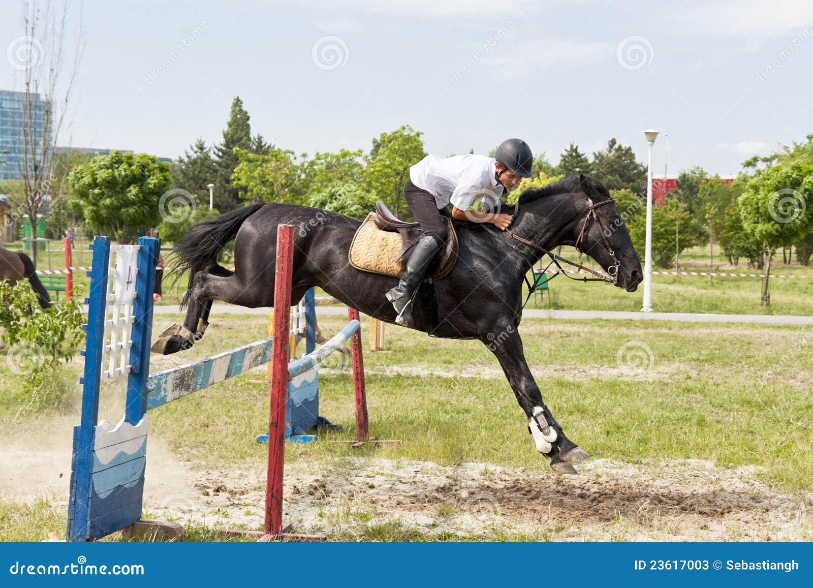 Black horses jumping - photo#28