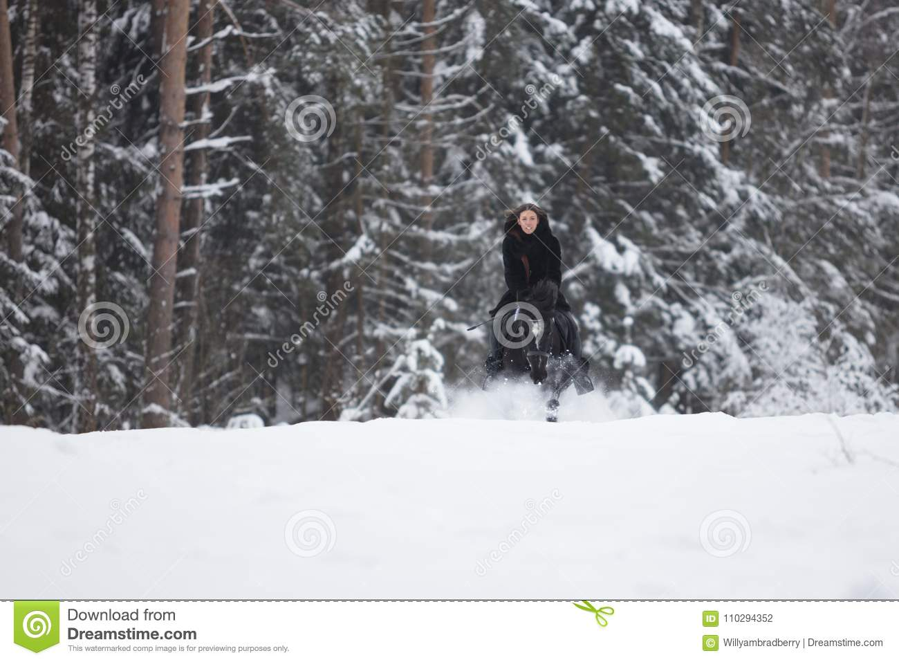 Black Horse Running In Snow On Winter Background Stock Photo Image Of Cold Horse 110294352
