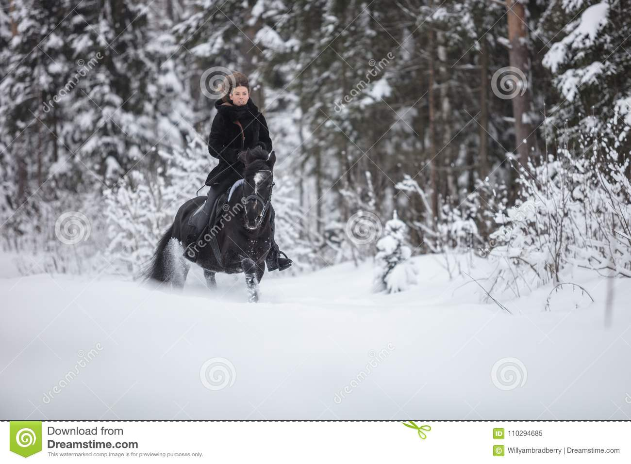 Black Horse Running In Snow On Winter Background Stock Image Image Of Color White 110294685