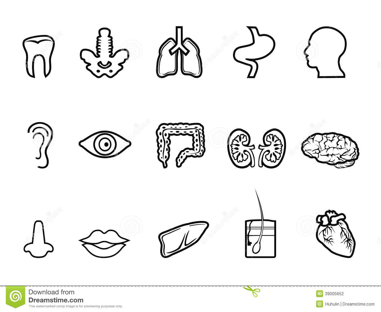 Stock Photography Black Human Anatomy Outline Icon Isolated White Background Image39005652 moreover Stock Photo Vintage Border Image864610 in addition Stock Photography Cosmetics Icons Set Black White Illustrations Image32352222 as well Harry Carays additionally Young Living Vinyl Car Decal. on skin care travel