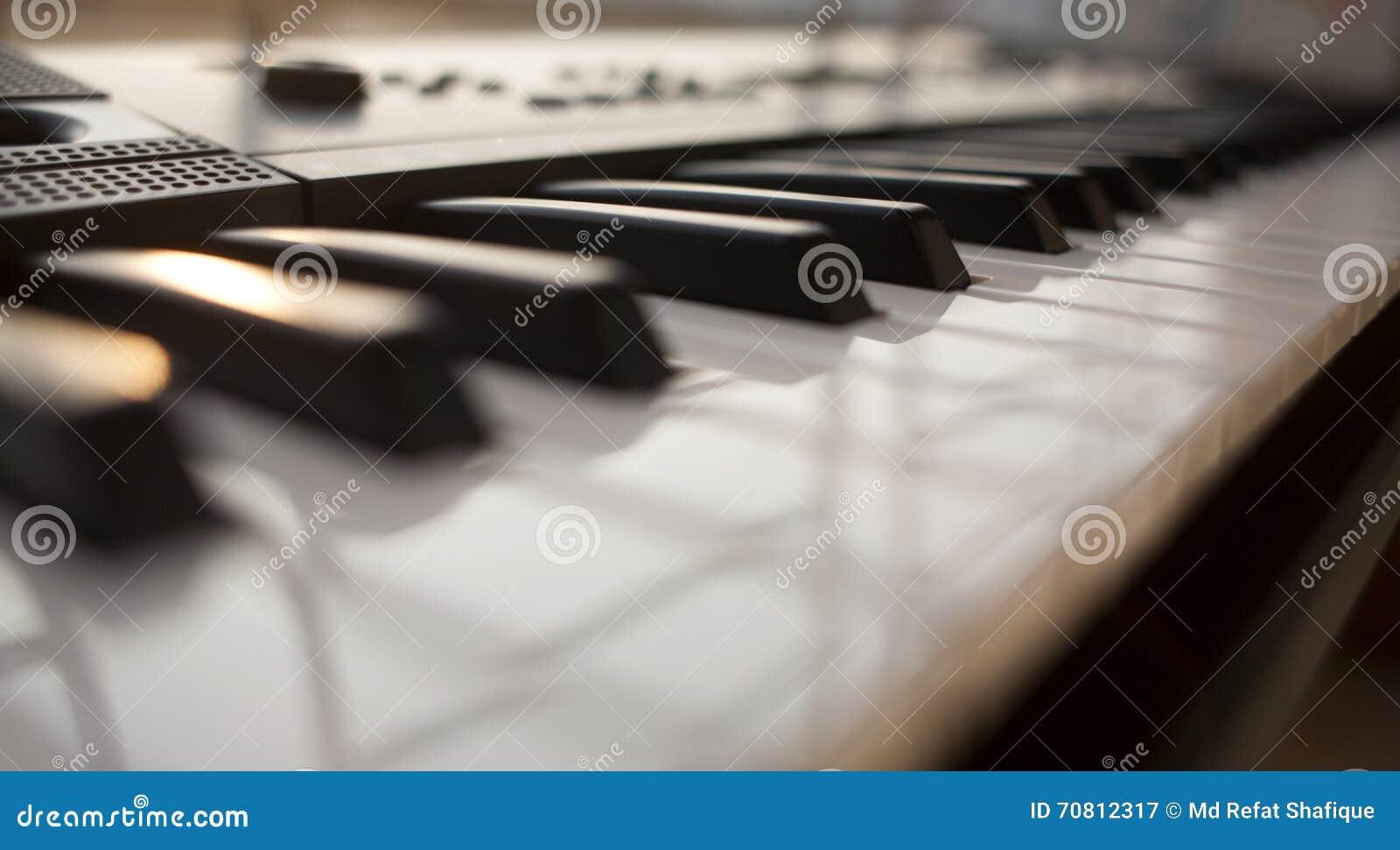 Black ivory keys piano white