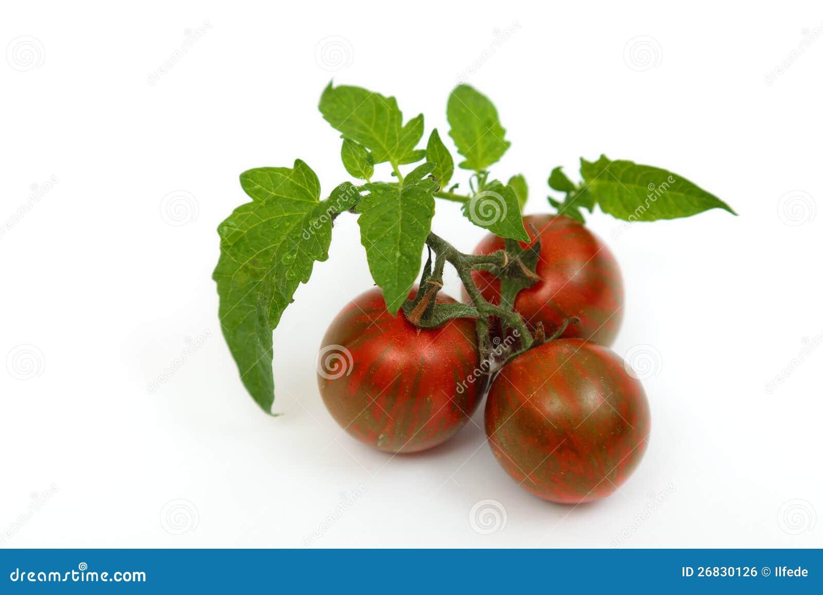 Black Krim Tomatoes Royalty Free Stock Image - Image: 26830126