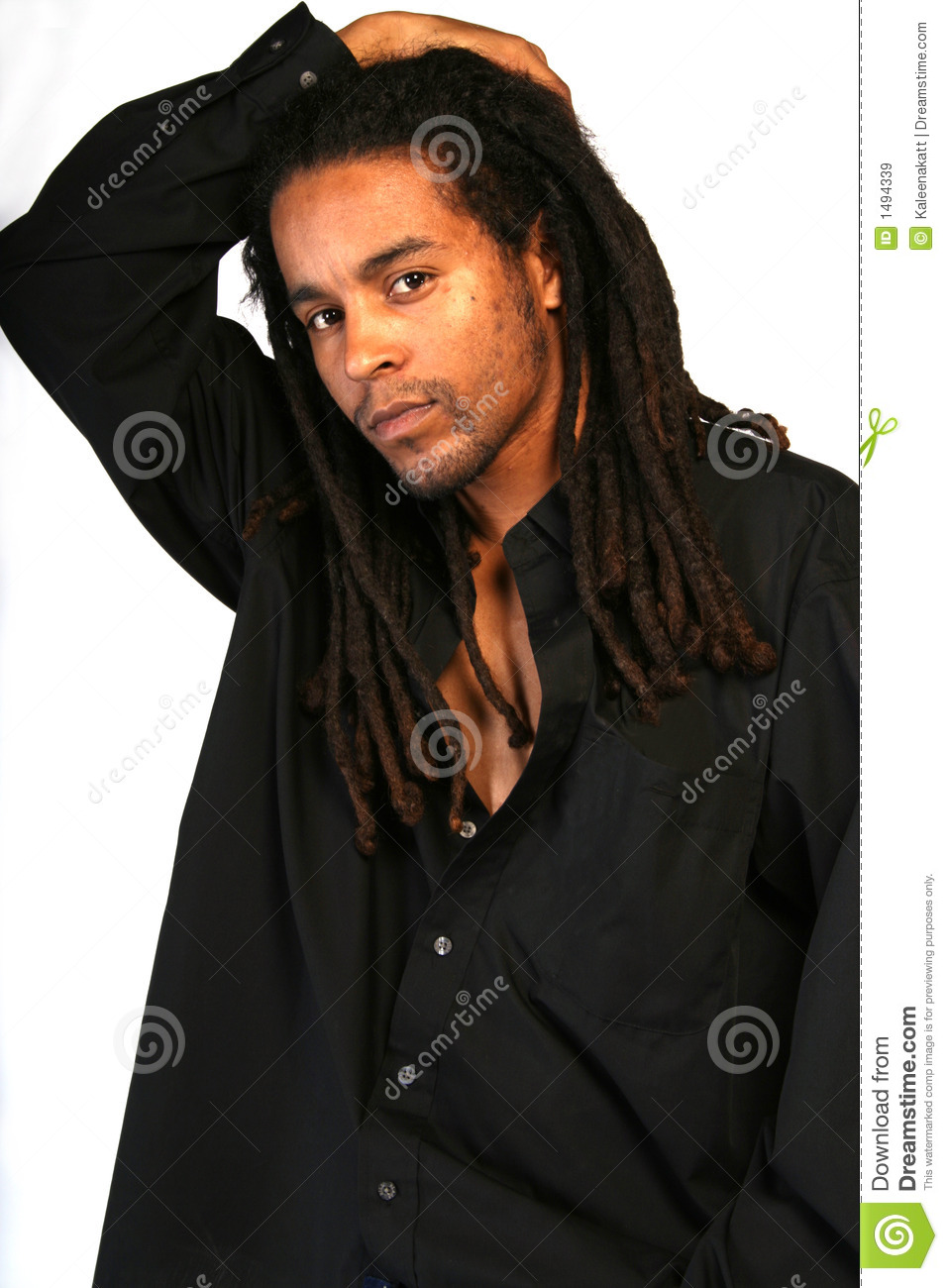 black man with dreadlocks stock image image of matted 1494339