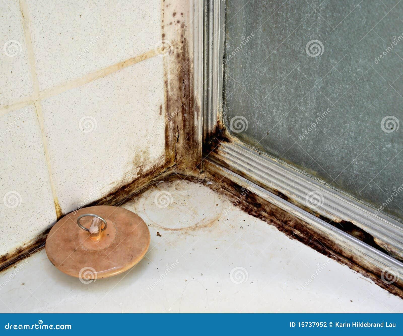 Black mold stock photography image 15737952 - Black mold in bathroom wall ...