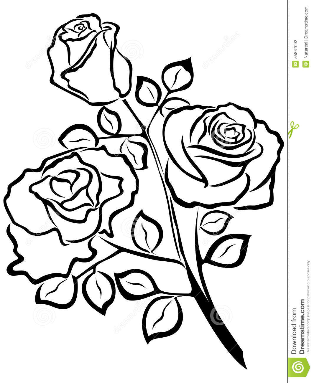 Black Outline Of Rose Flowers Stock Vector Image 55867092