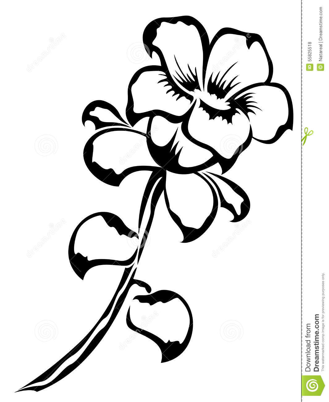 Black Outline Of Single Flower Stock Vector Illustration Of