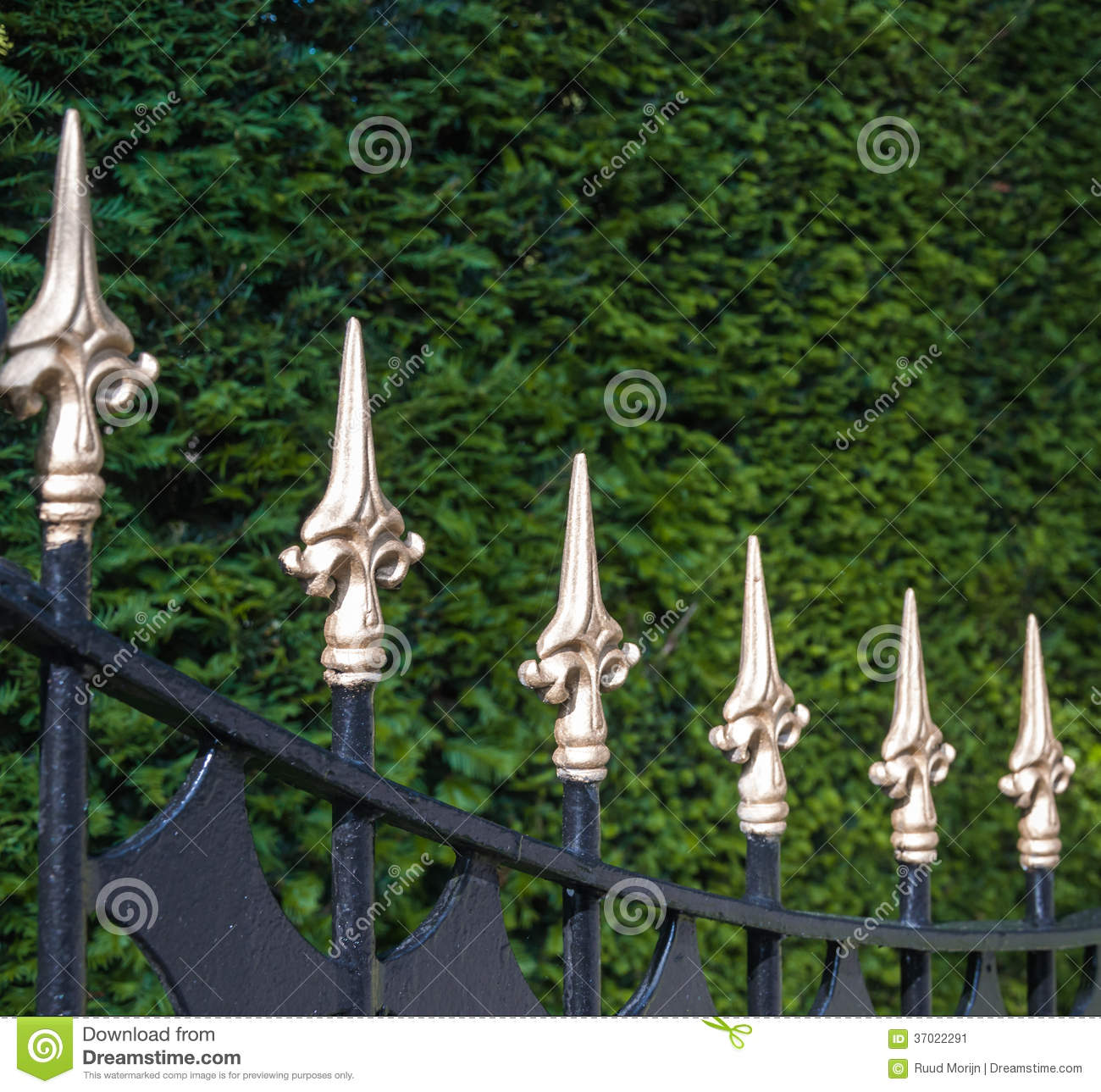 Black Painted Wrought Iron Fence With Golden Spikes Stock