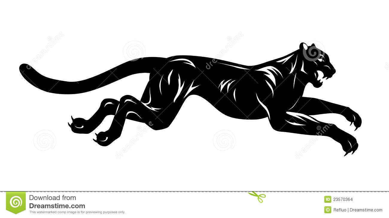 black panther stock images   image 23570364