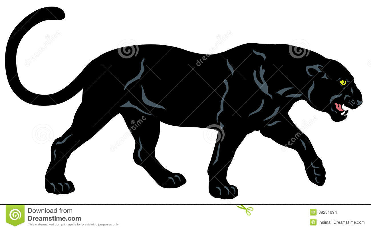 Black panther, side view image isolated on white background.
