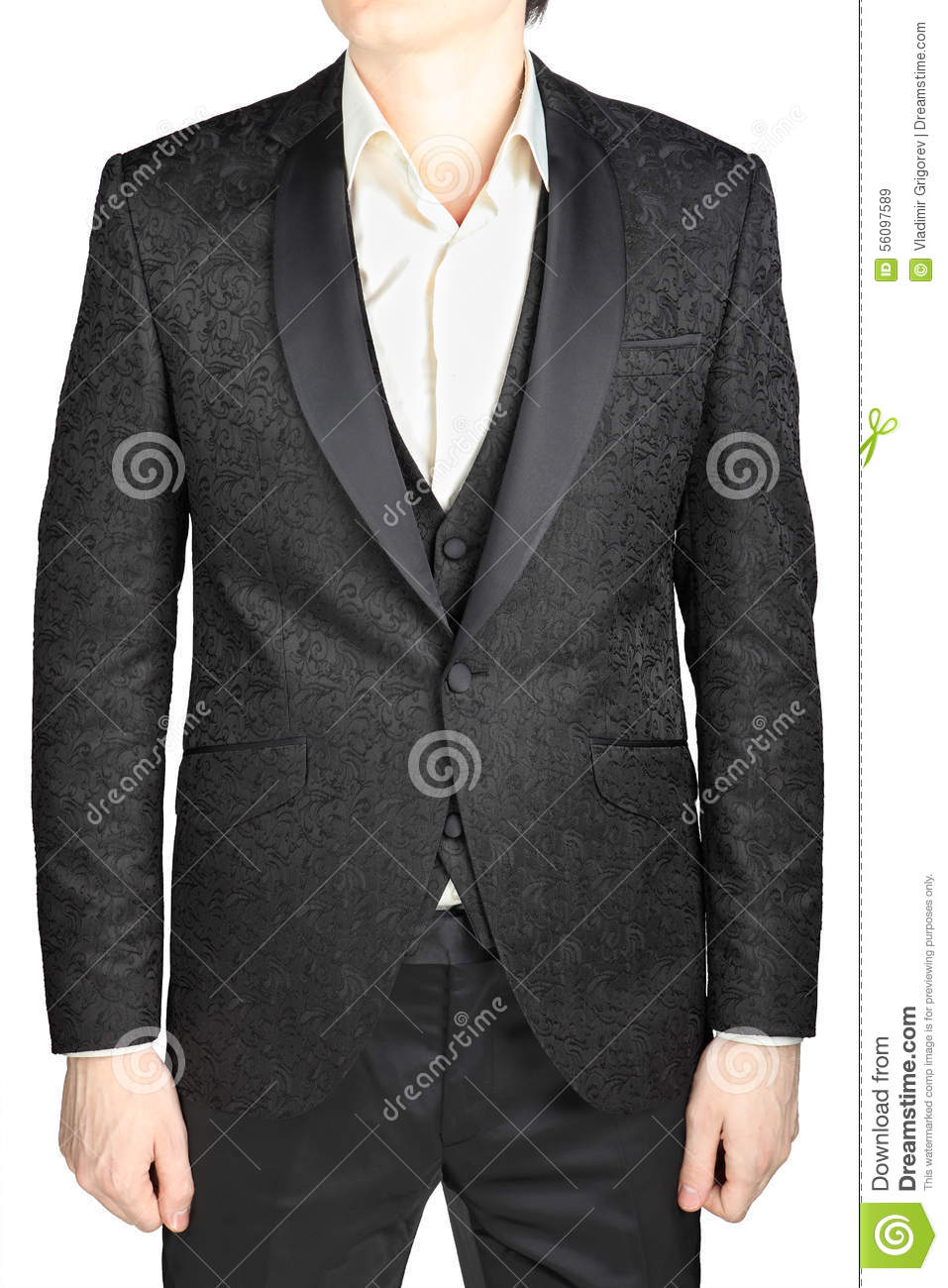Black Patterned Wedding Bridegroom Suit, Without Tie, Isolated O ...