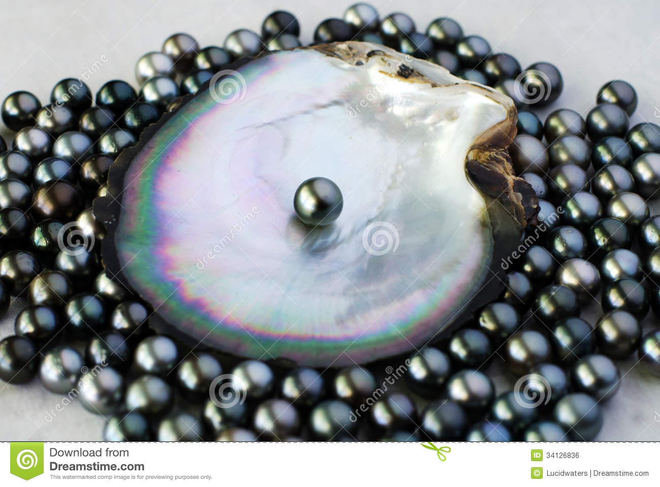 pearls diame averaging mm earringselegant featuring image in earrings black pearl two