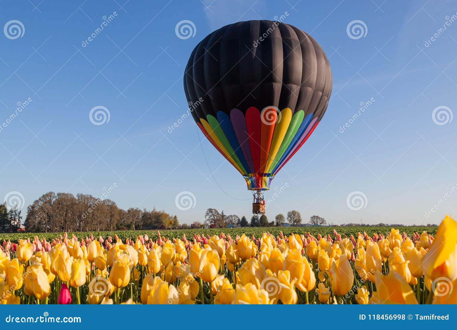 Balloon Above Tulip Fields