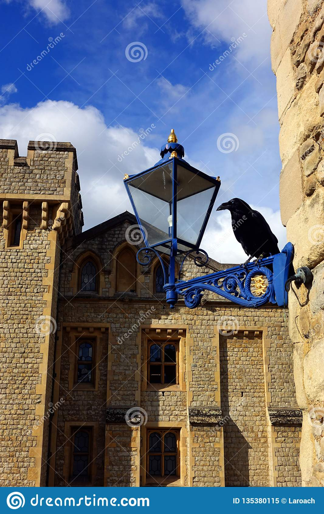 Black Raven of the Tower of London with Waterloo Block Pictured Behind