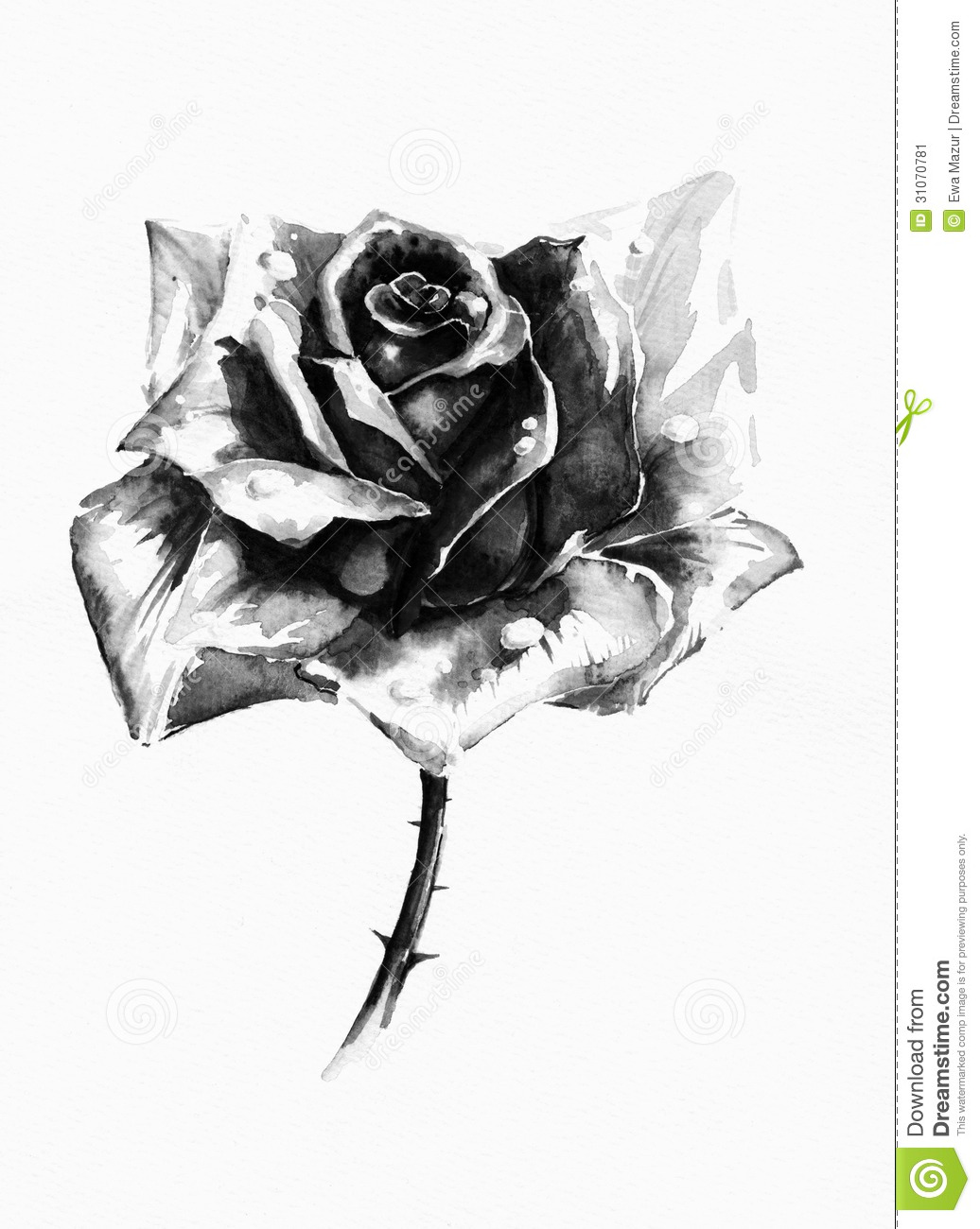 Black rose stock illustration. Image of copy, greeting ...
