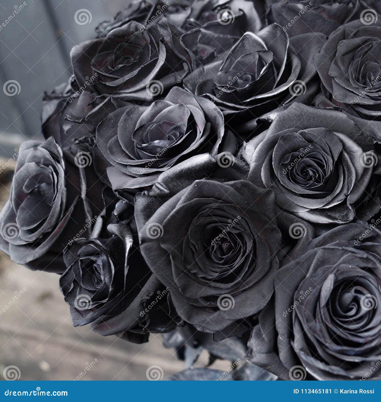 Black roses stock image image of roses flower rare 113465181 these beautiful black roses are so rare izmirmasajfo