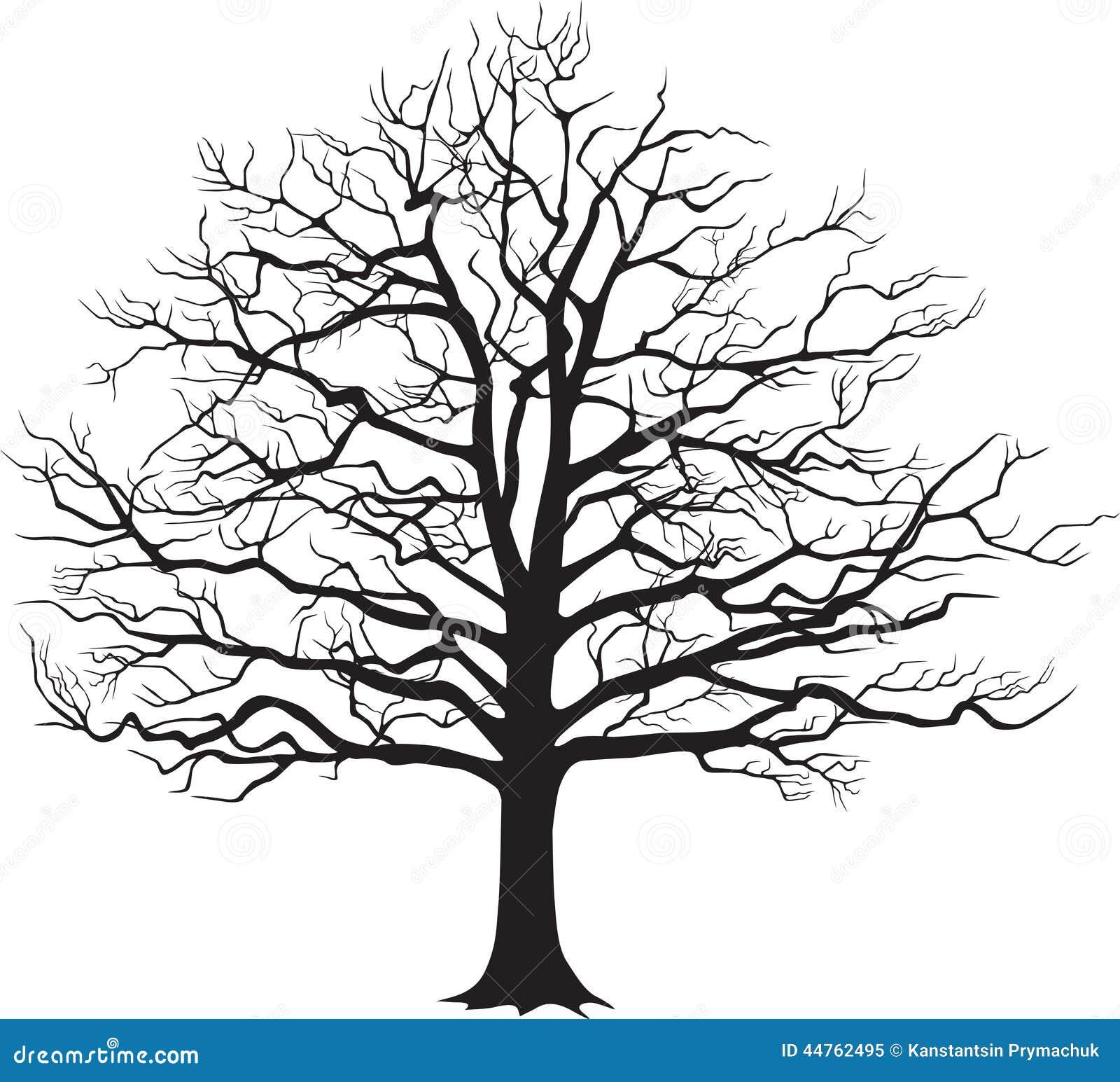 Vector Illustration Tree: Black Silhouette Bare Tree . Vector Illustration Stock