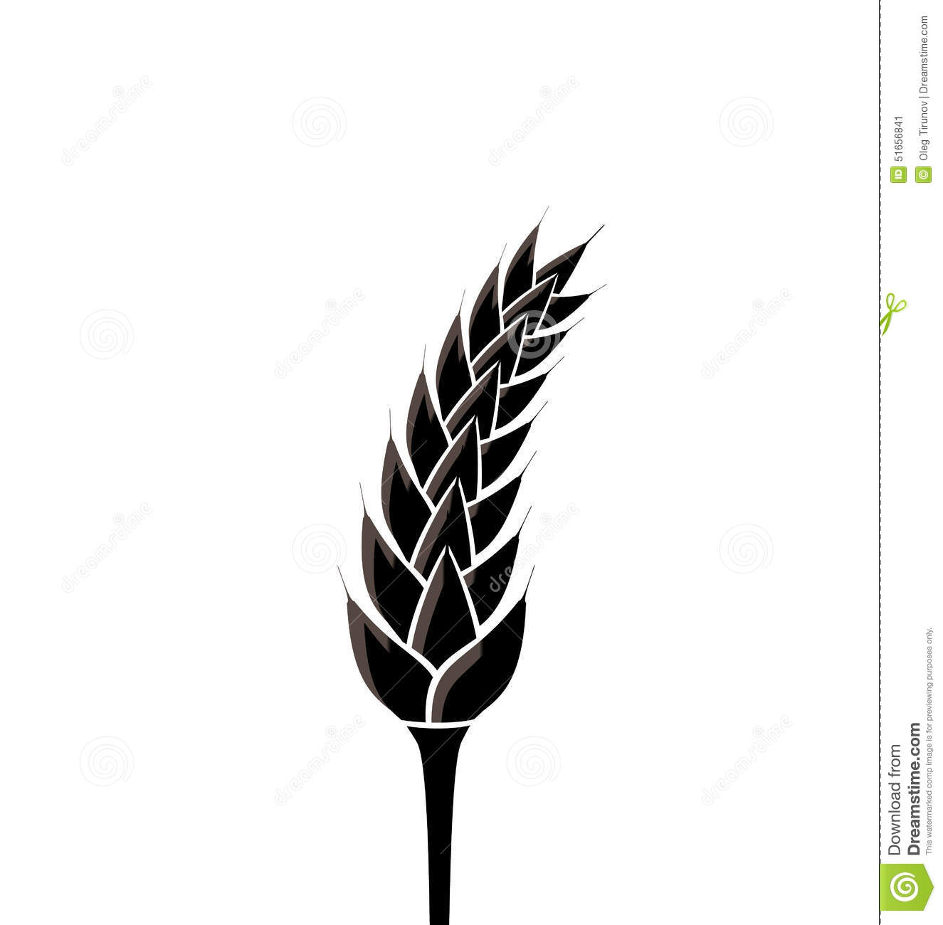Black Silhouette Of Spikelet Of Wheat Isolated On White ...
