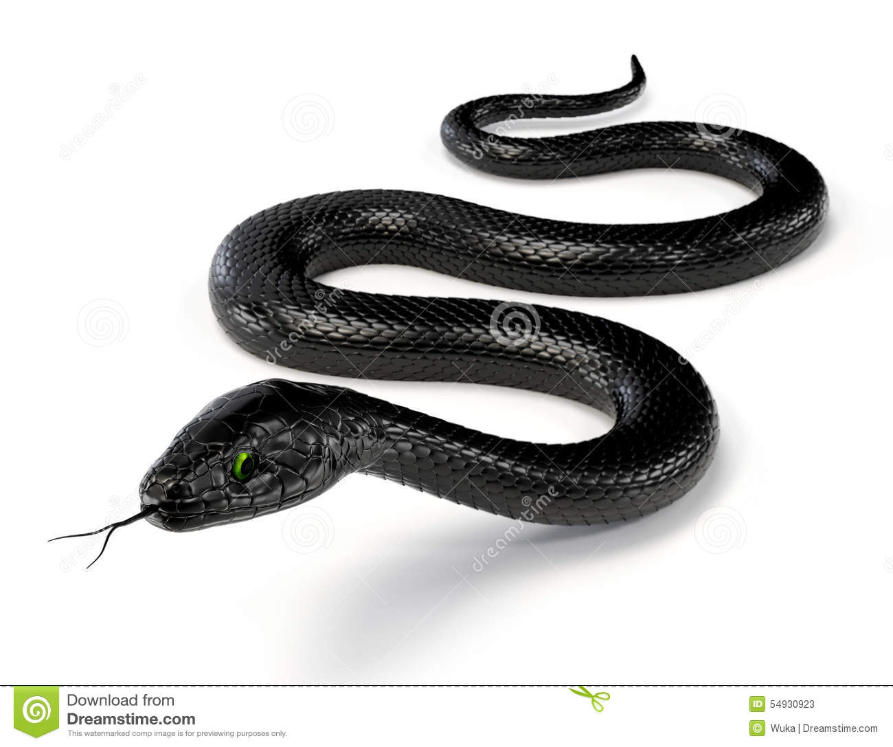 Download Black Snake III stock image. Image of pattern, scale - 54930923