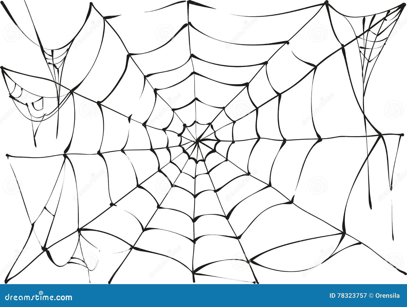 black spider web on white background stock vector