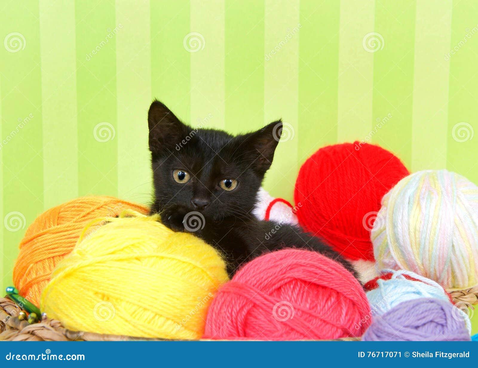 Fuzzy Black Background : Yarn fuzzy blue and purple stock photo cartoondealer