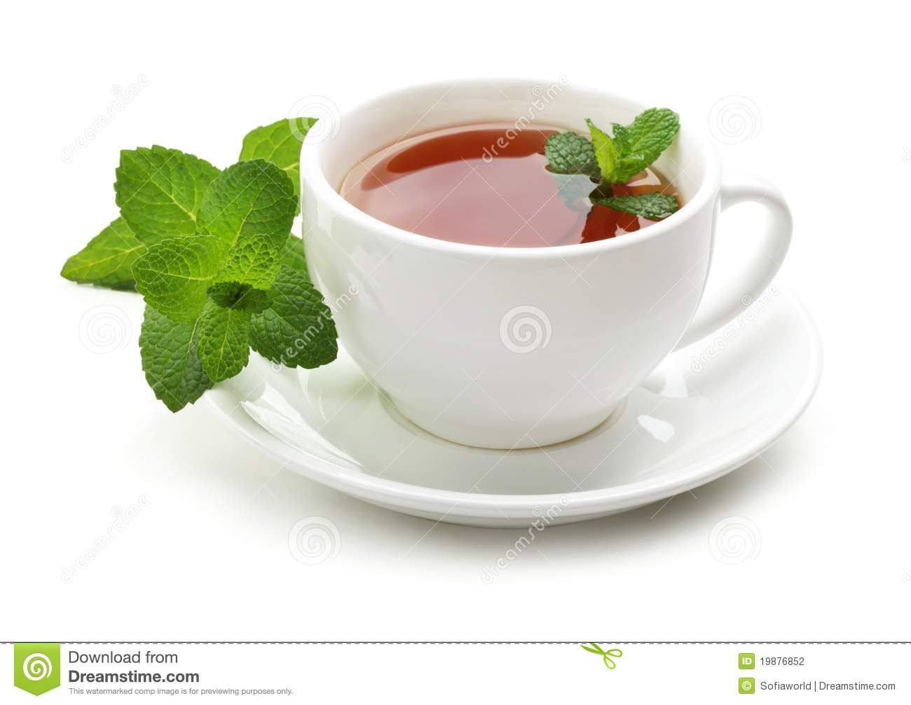 Black Tea With Fresh Mint Leaves Stock Photography - Image: 19876852