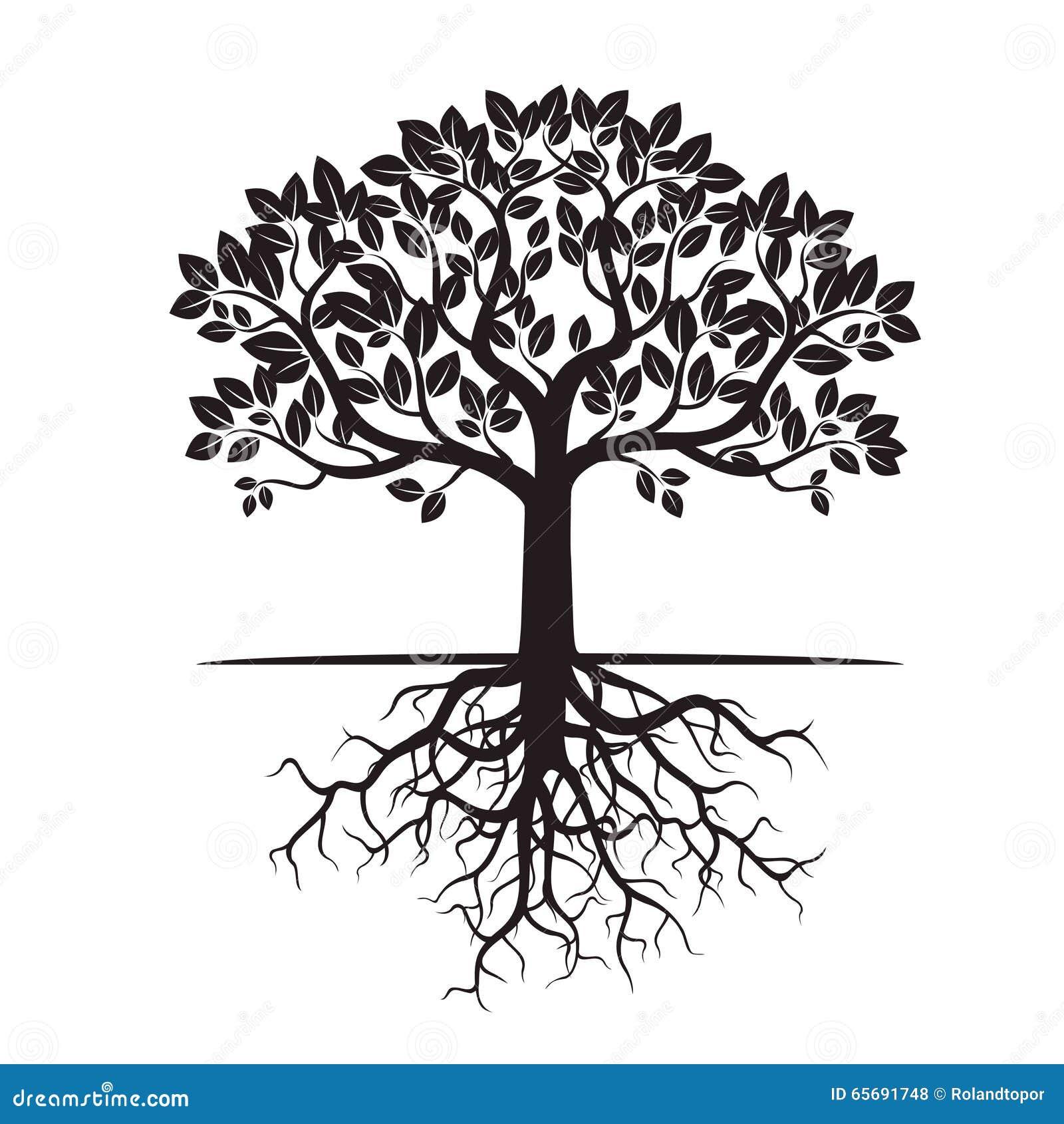 Graphic Design Oak Tree