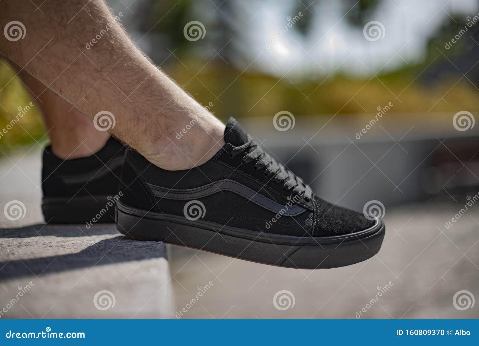 Tortuga Pertenecer a zapatilla  Black Vans vieja escuela imagen editorial. Imagen de vieja - 160809370