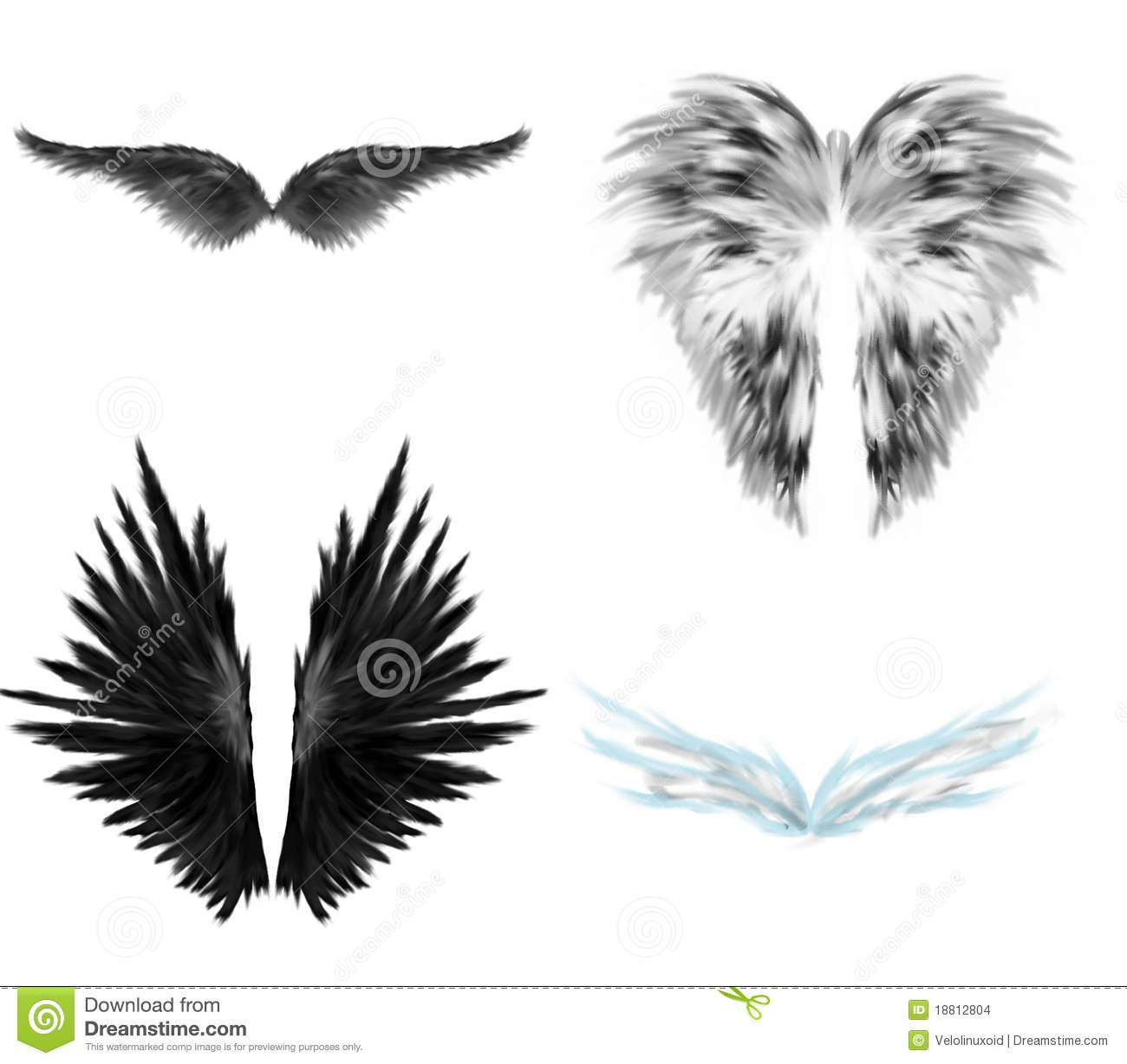 Black And White Angel Wings Stock Images Image 18812804