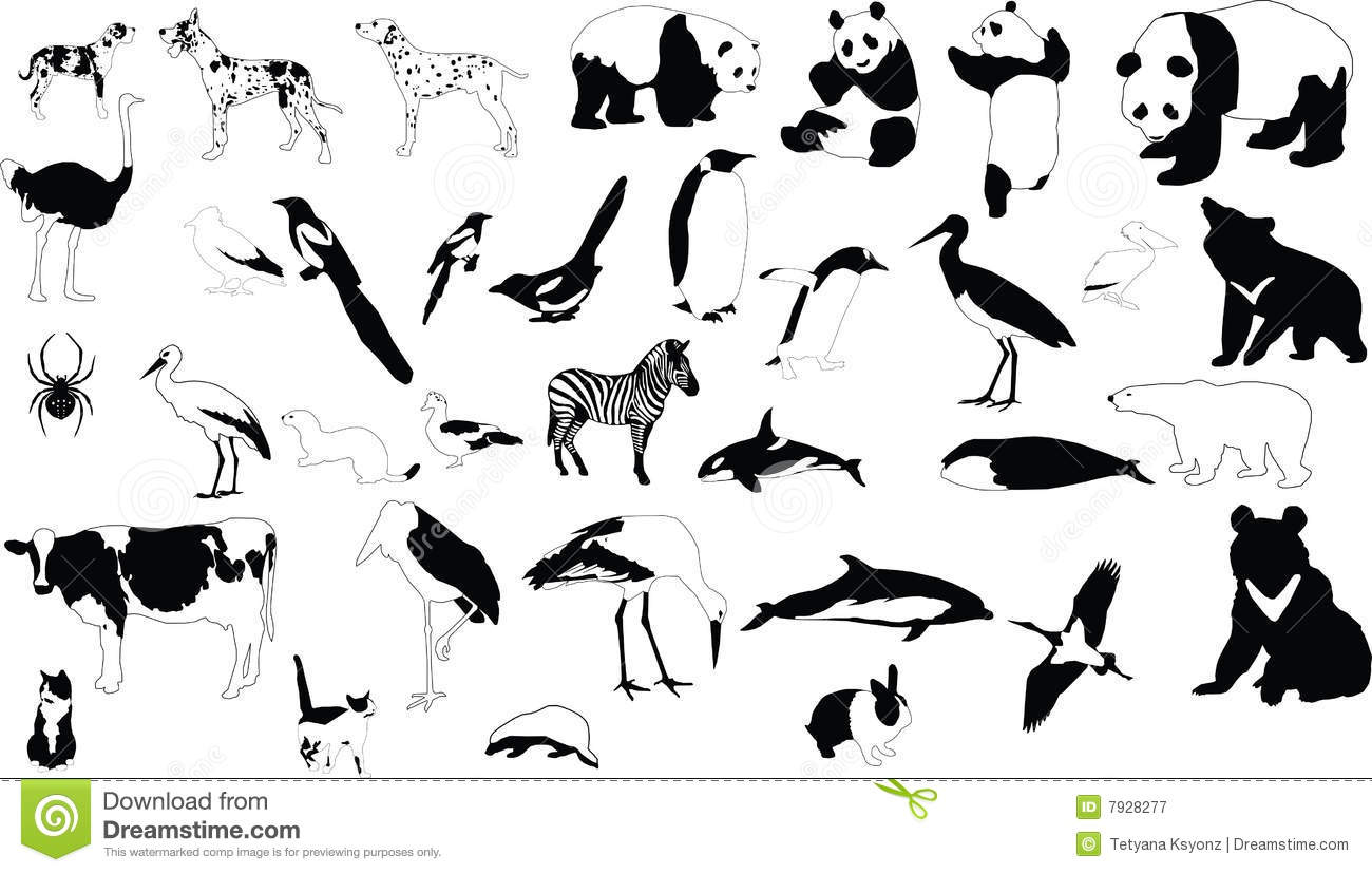 Collection of vector silhouettes of black and white animals
