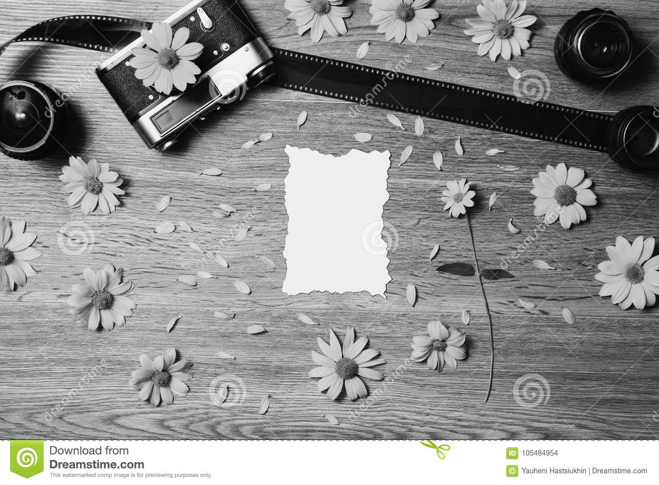 Creative Black And White Photography Stock Photo Image Of Pattern