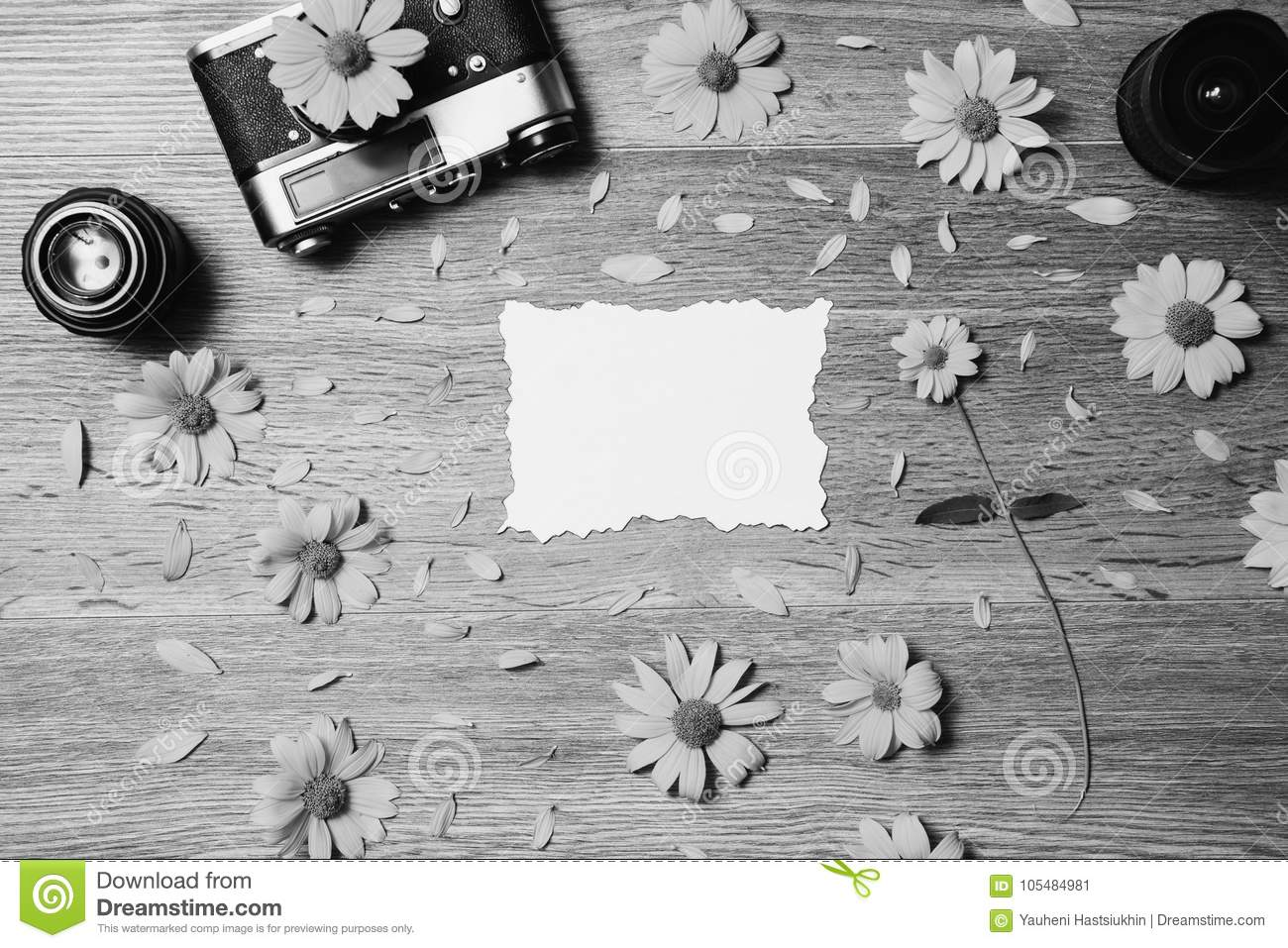 Creative Black And White Photography Stock Image Image Of Pattern