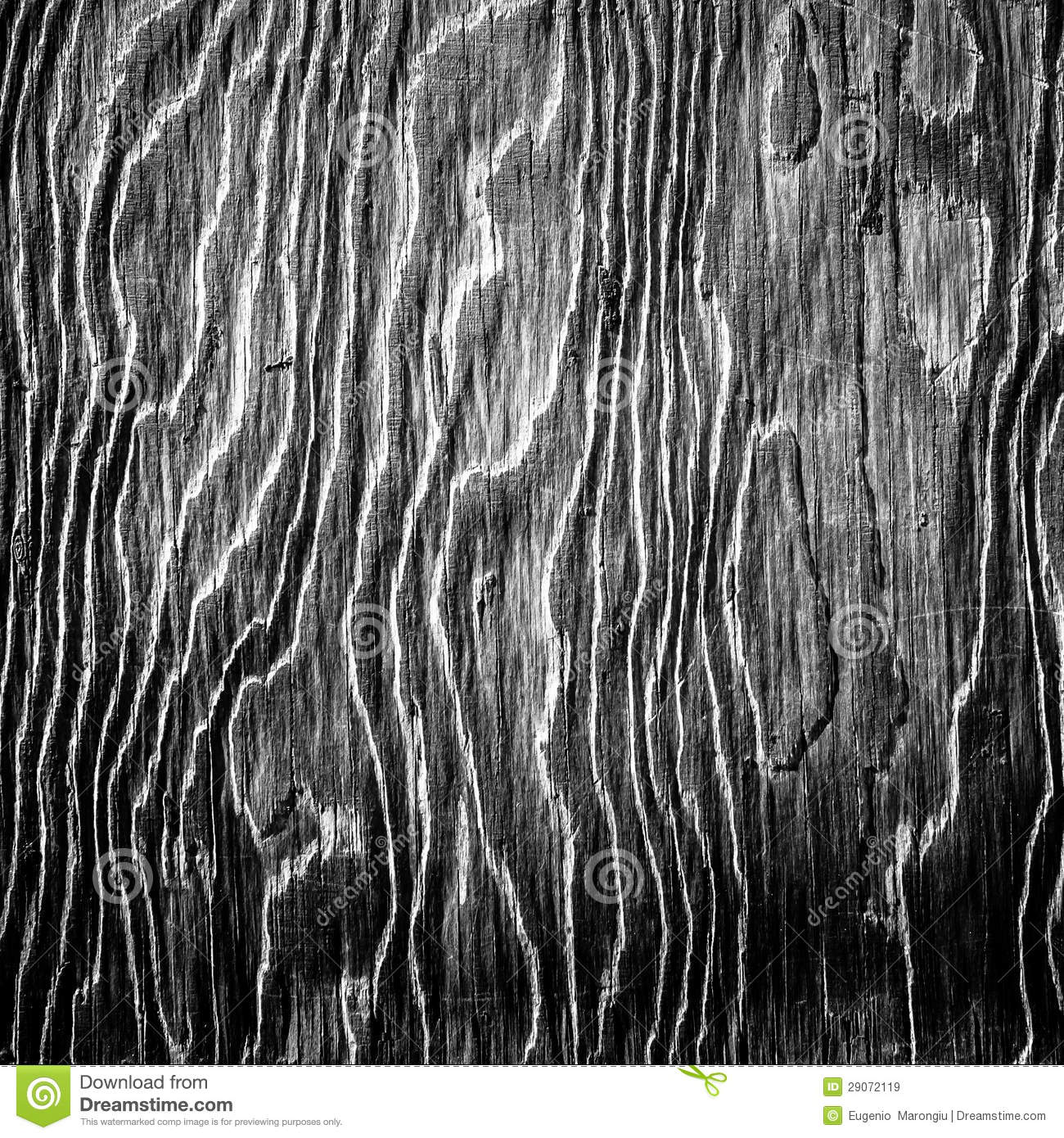 black and white artistic wood texture royalty free stock. Black Bedroom Furniture Sets. Home Design Ideas
