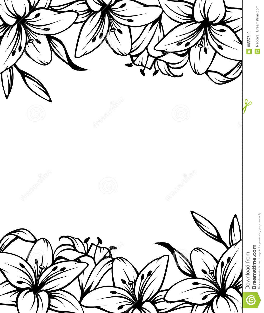 Black And White Background With Lily Flowers Vector Illustration