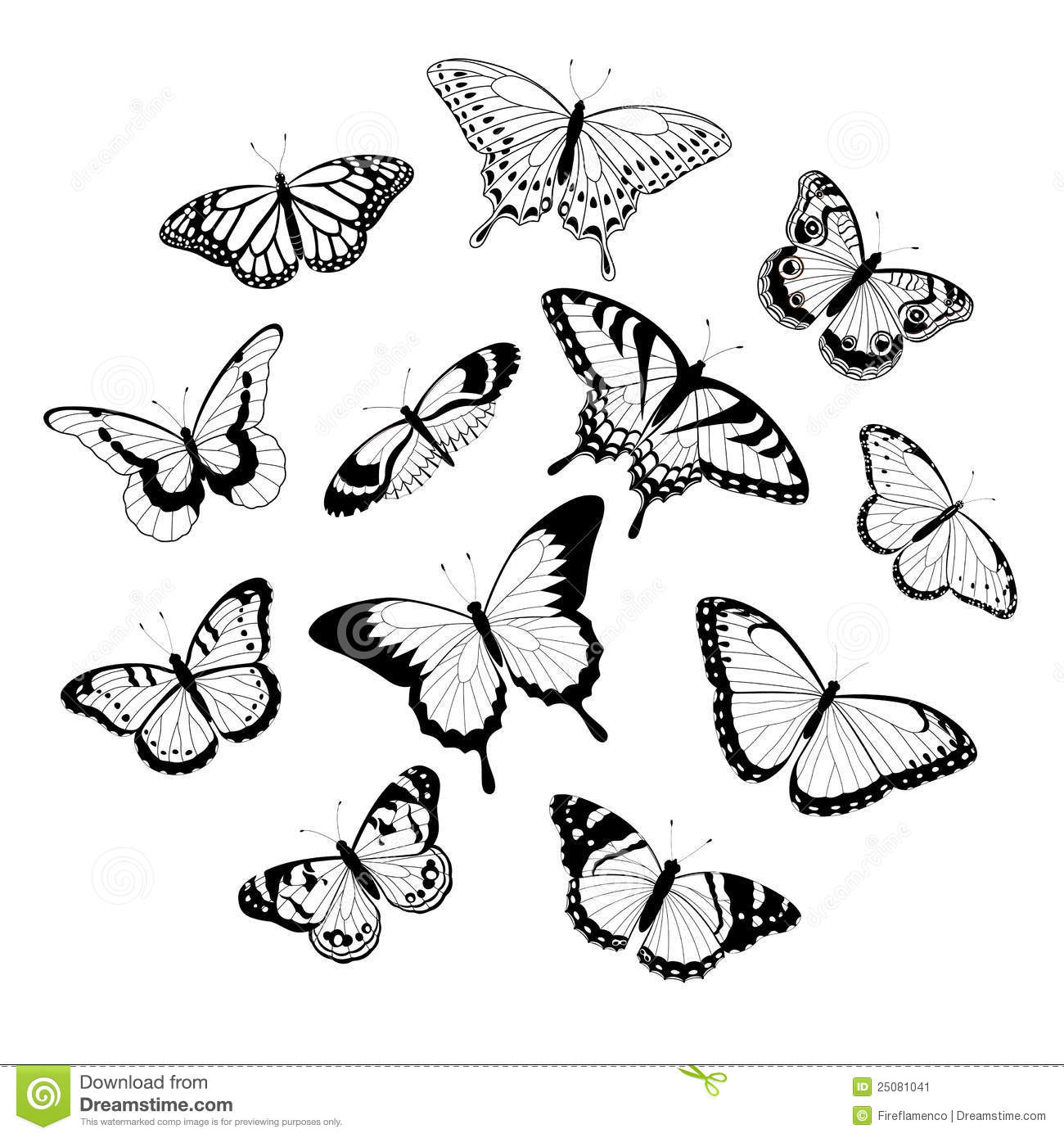 Collection of black and white butterflies isolated on white background ...