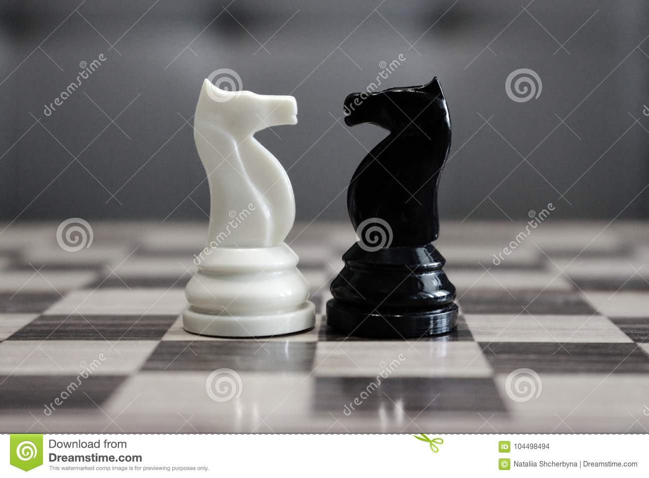 Black and white chess horses in front of each other as challenge and competition concept.