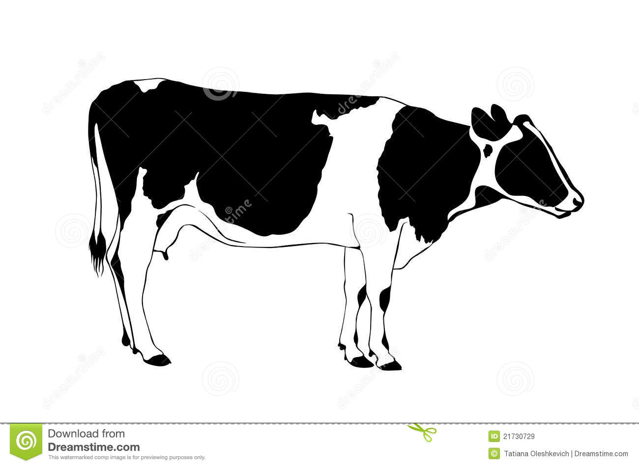 black and white cow the hostel worker