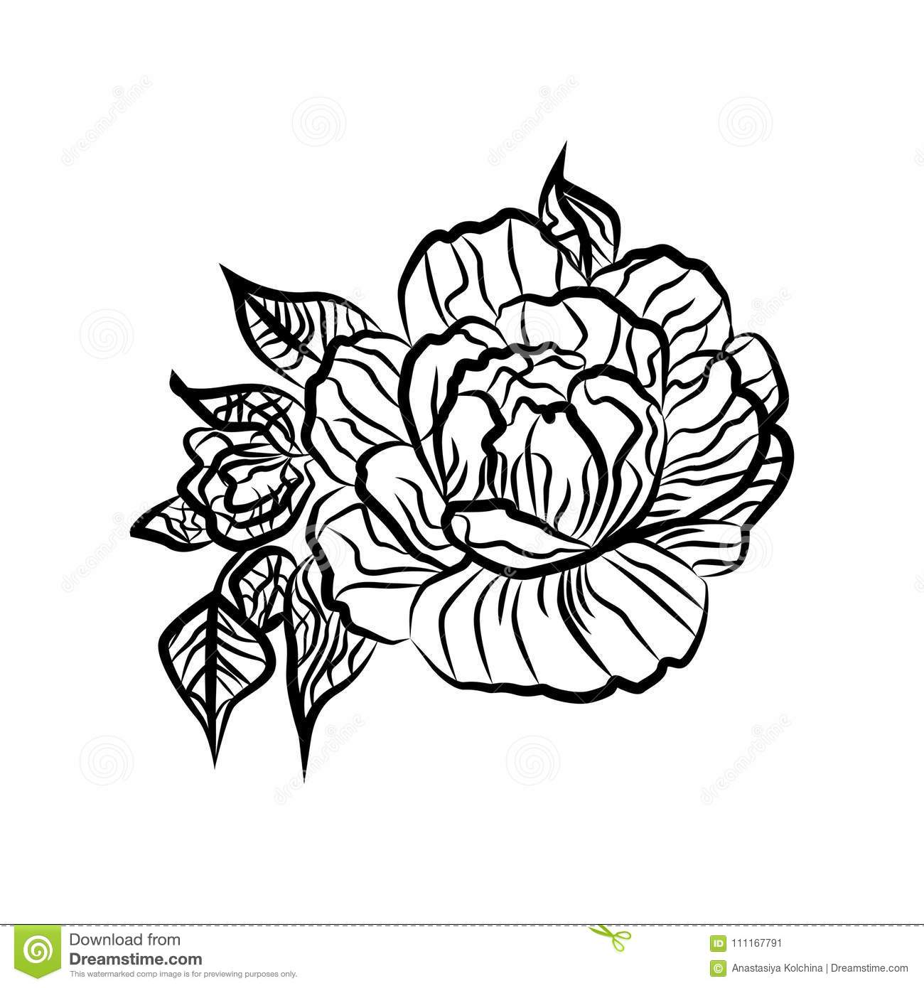 Black and white drawing of a rose tattoo silhouette of branch with flowers of roses