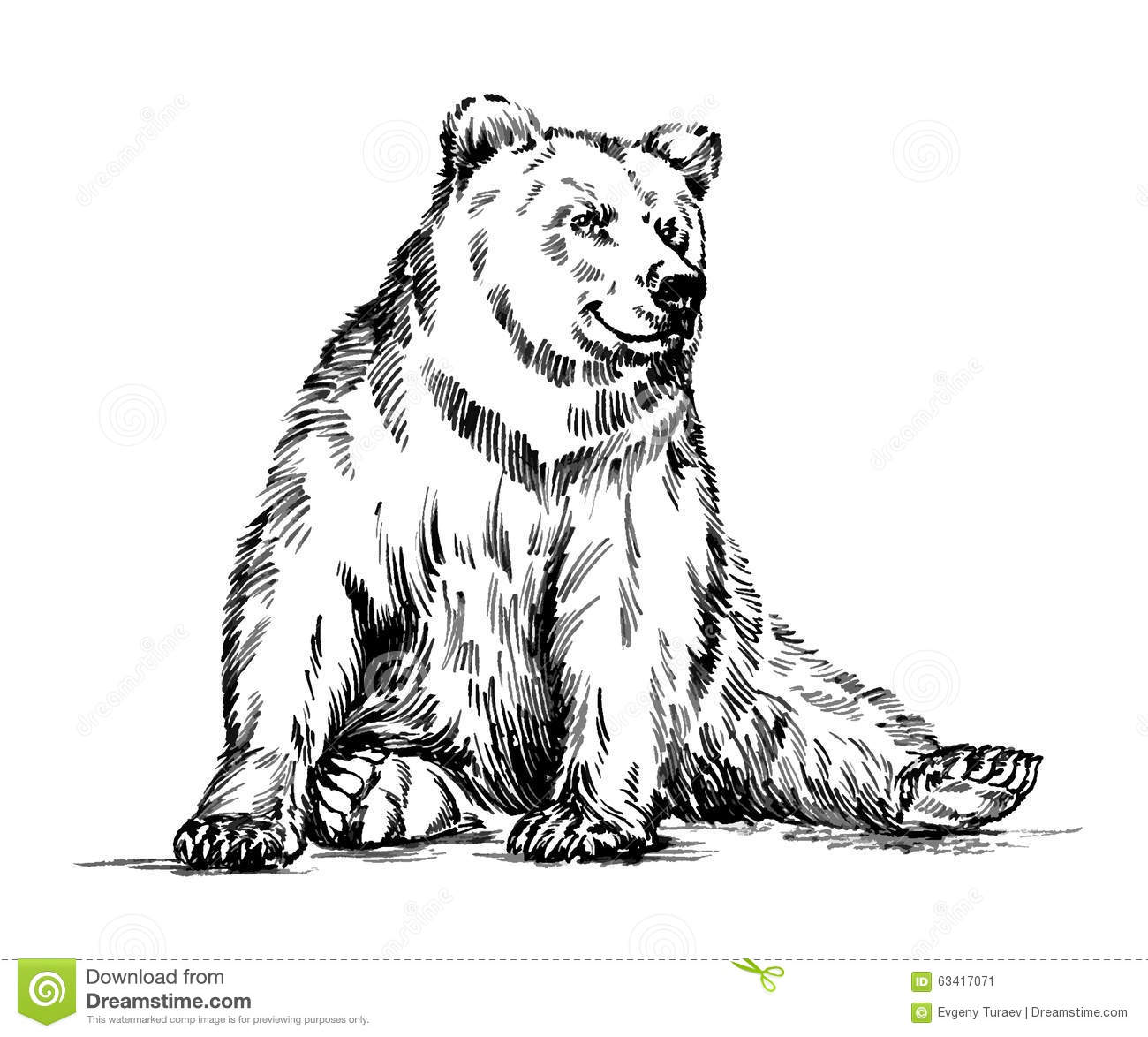 Black And White Engrave Isolated Vector Bear Stock Vector ... (1300 x 1174 Pixel)