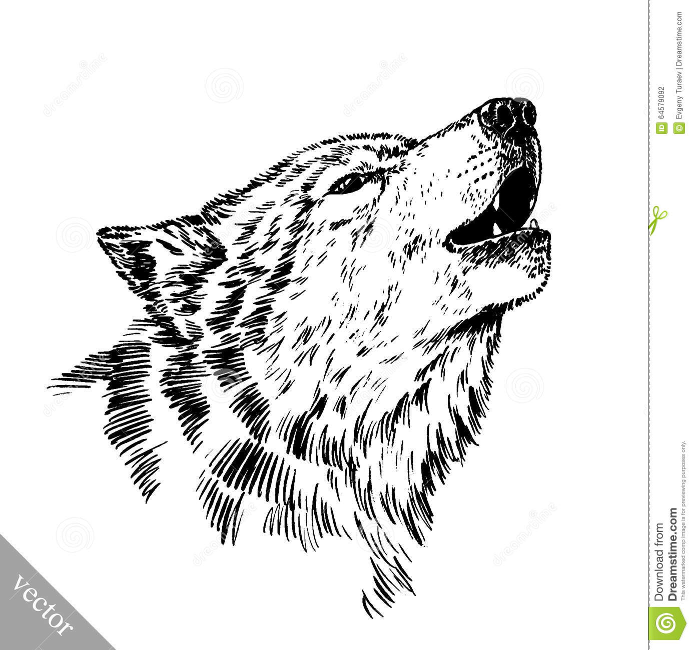 Jpg To Line Art : Black and white engrave wolf stock vector illustration