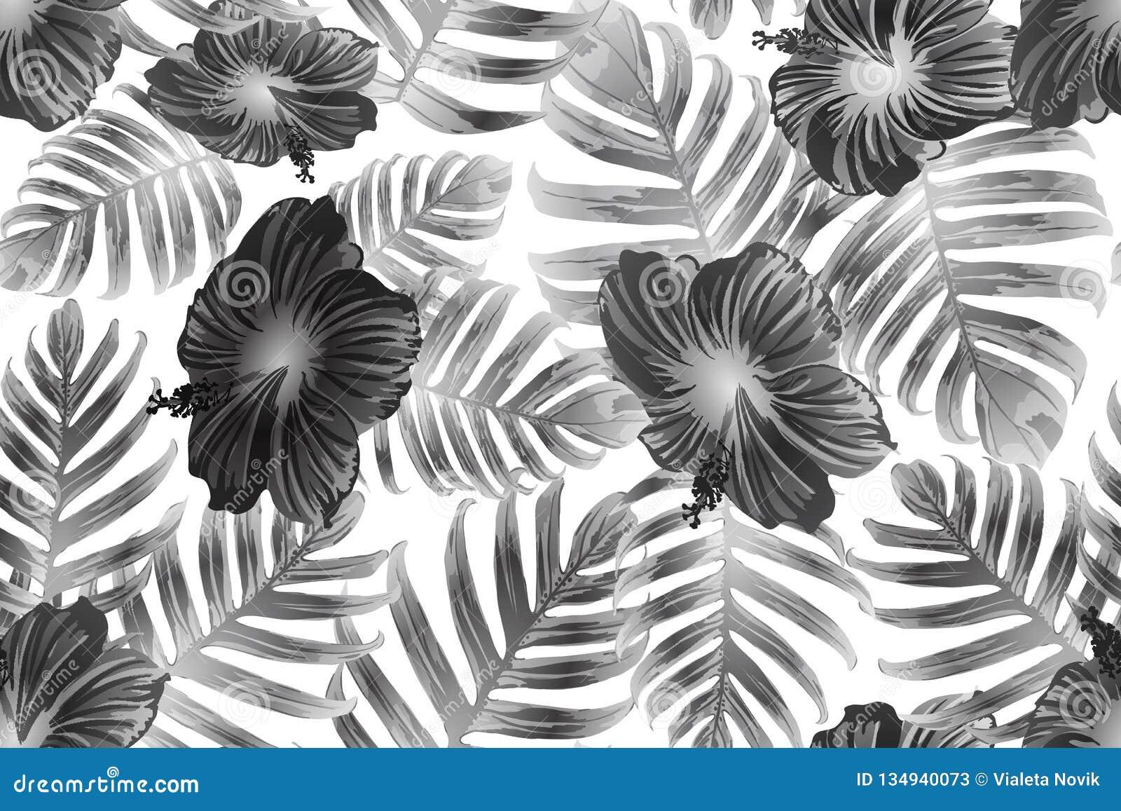 Black white exotic pattern stock vector illustration of monstera