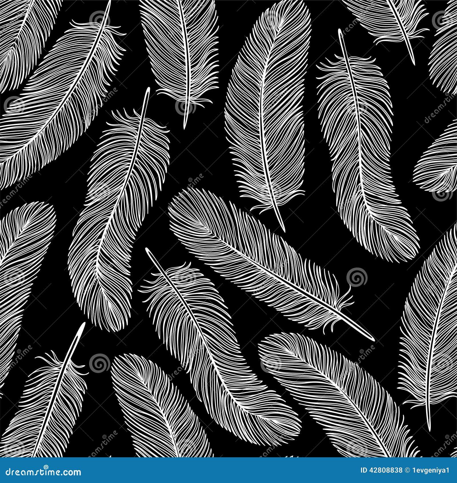 blackandwhite feather seamless background stock