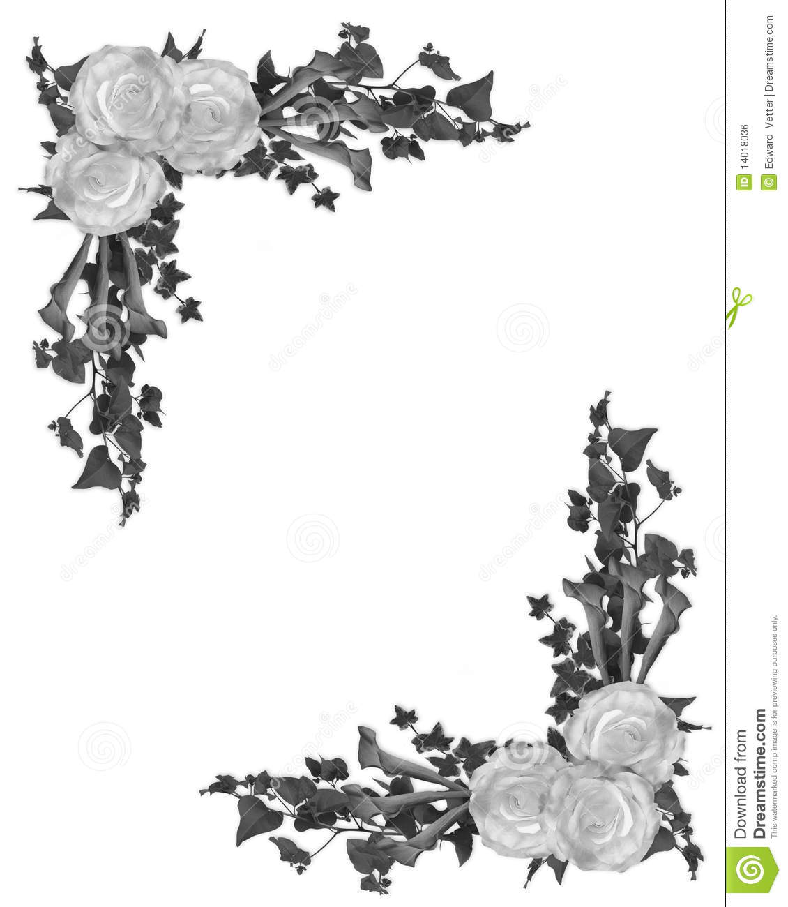 Black And White Floral Border Stock Illustration Illustration Of