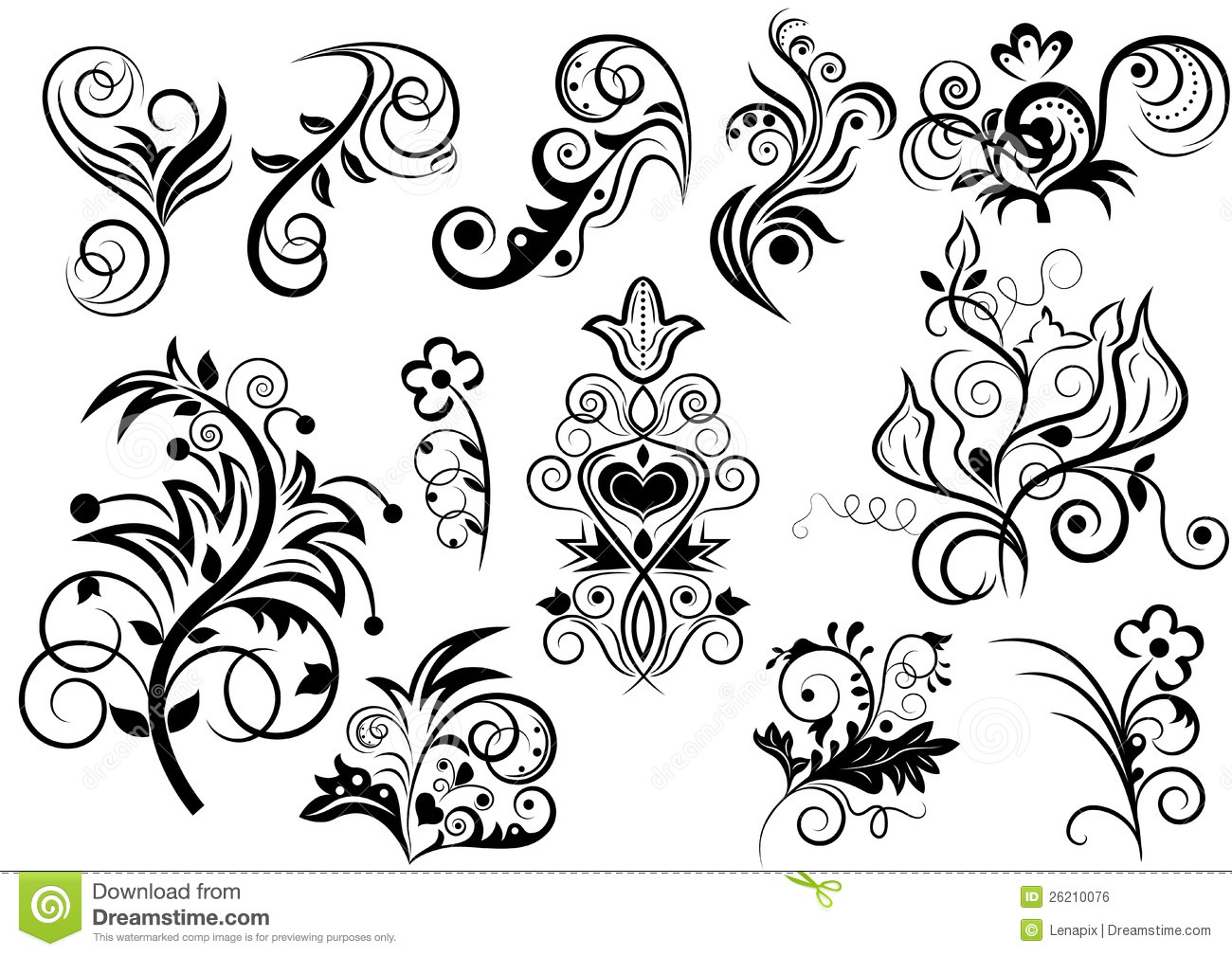 Black And White Floral Design Stock Vector Illustration Of